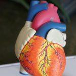 """alt=""""frecuencia cardíaca"""""""